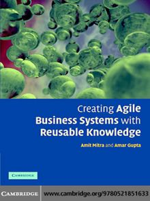 The hedge fund compliance and risk management guide new york creating agile business systems with reusable knowledge fandeluxe Images