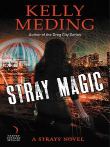 New ebook additions boston public library overdrive stray magic ebook fandeluxe Choice Image