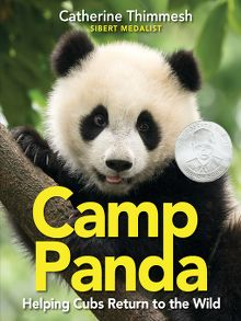 Camp Panda - ebook
