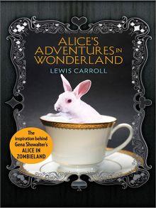 Alice in wonderland sno isle libraries alices adventures in wonderland ebook fandeluxe Epub