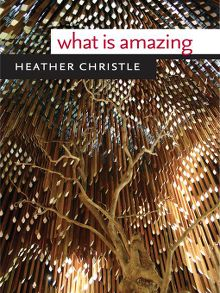 What Is Amazing - ebook
