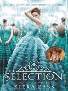 The Selection - ebook