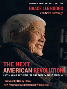 The Next American Revolution - ebook