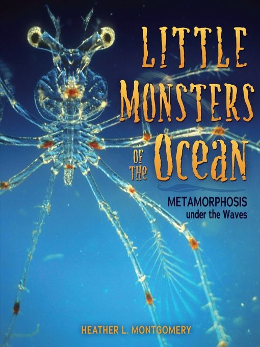 """""""Little Monsters of the Ocean"""" (ebook) cover"""
